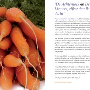 Culinaire gids